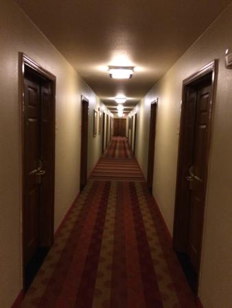 Home Towne Suites - Columbia: Hallway outside my room