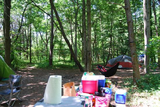 Killens Pond Campground: Our site looking toward main path (green tent on left is ours, red tent is next site over)