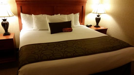 BEST WESTERN PLUS Kennewick Inn: King Bed