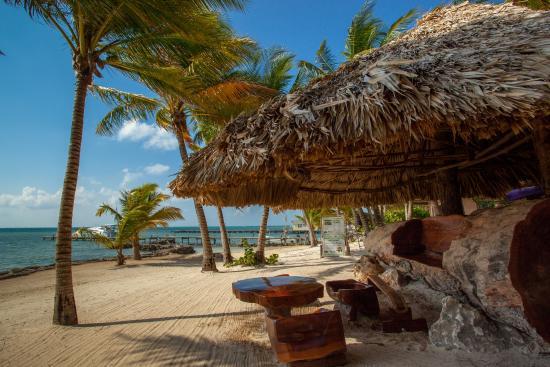 Xanadu Island Resort: Carved bench and beach