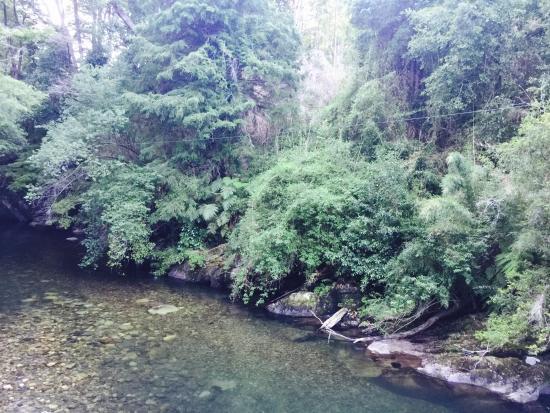 Peumayen Lodge & Termas: Puente ingreso
