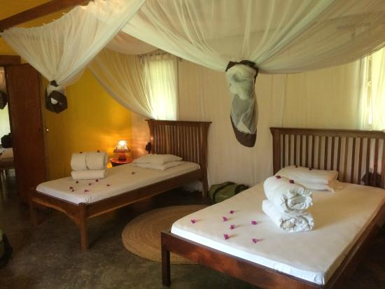 Moivaro Lodge: room