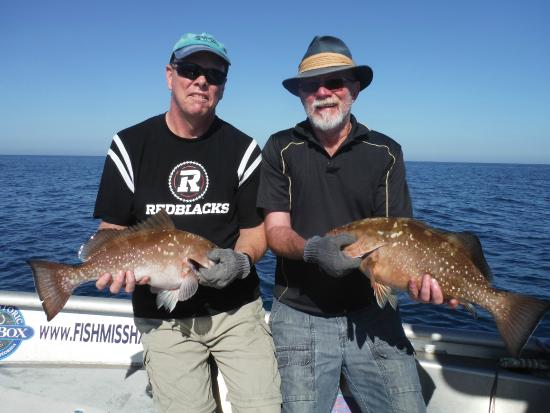 Deep sea fishing offshore of fort myers cape coral for Deep sea fishing fort myers beach