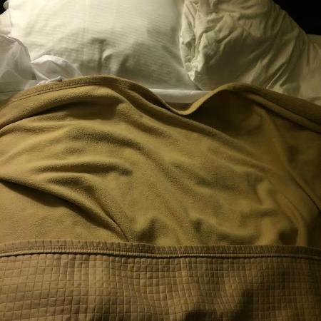 Best Western Carmel's Town House Lodge: Horrible, too-thin bedding. A sheet, thin blanket and flimsy half-cover.