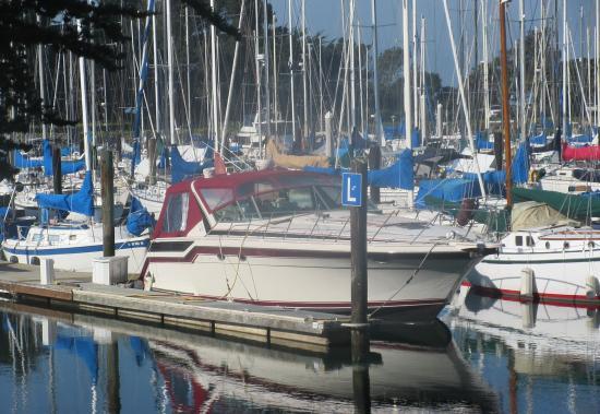 Berkeley Marina Ca
