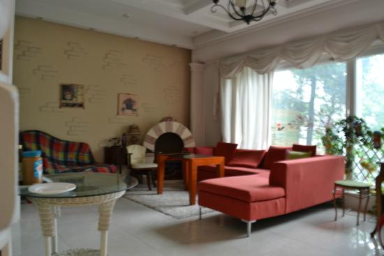 Yellow submarine Guesthouse : living room
