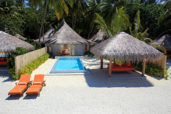 Vilu Reef Beach Spa Resort Tripadvisor