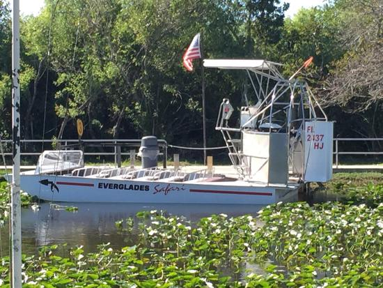 Gray Line Miami Tours: Airboat