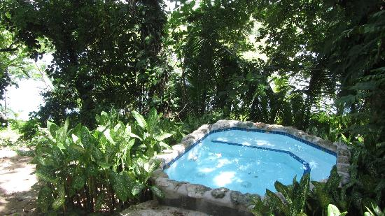 Savasi Island Villas: our plunch pool