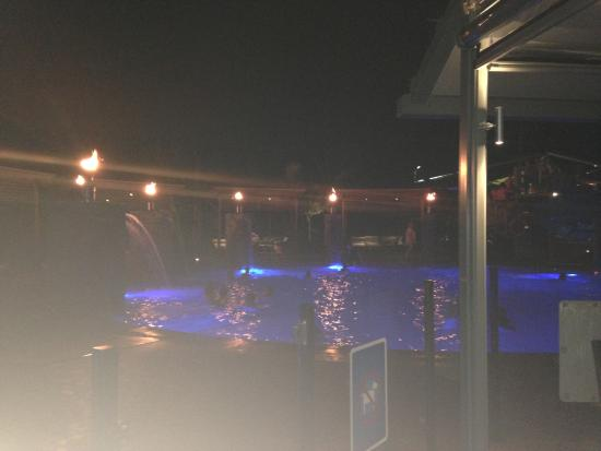 BIG4 Gold Coast Holiday Park & Motel: pool