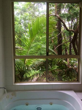Caboolture Riverlakes Motel: View from the bathroom