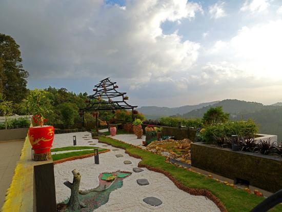 Terrace garden picture of the panoramic getaway for Terrace vegetable garden kerala
