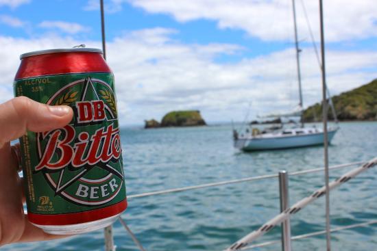 Bay of Islands Sailing/Gungha II : Life is good
