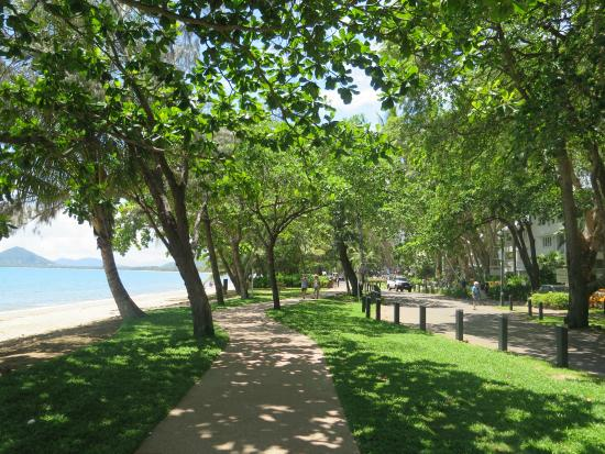 The Reef House Palm Cove - MGallery by Sofitel Collection: Footpath across the road.