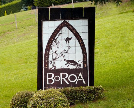 Boroa : Buen entorno