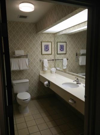 Hilton Garden Inn Las Colinas: Guest Room - toilet