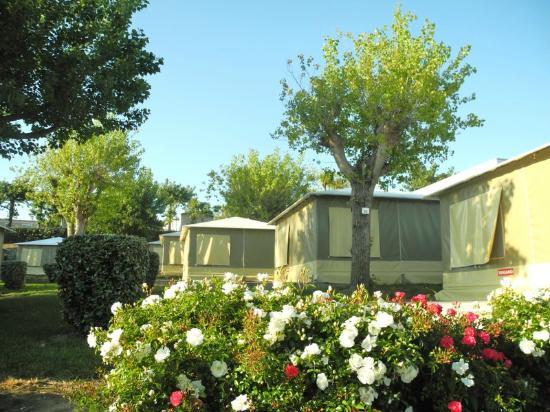Biarritz Camping: bungalow toilé