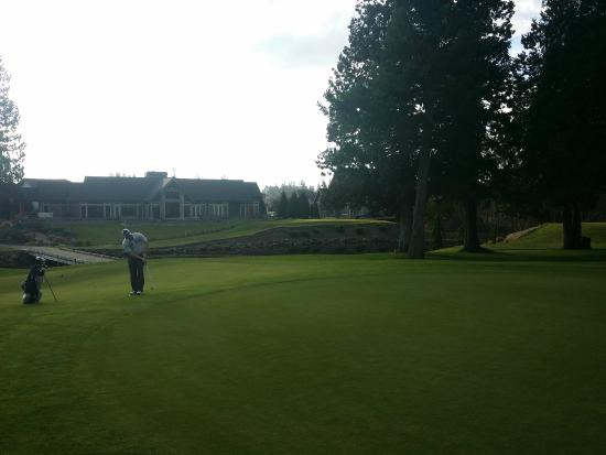 Loomis Trail Golf Club: Soft and well-maintained greens