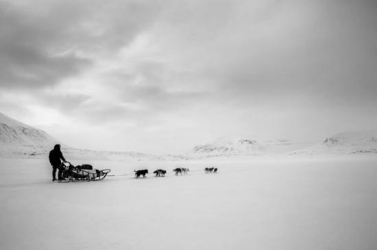 Svalbard Villmarkssenter - Day Tours: Photo Tommy Simonsen - 6 days dog sledge expedition