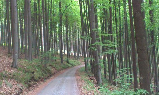 Kremze, République tchèque : cycling paths