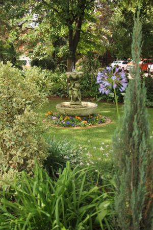 CedarWoods of Sandton : Gardens