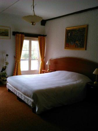 "Hotel le Moulin de Balines: Chambre ""Carpe"""