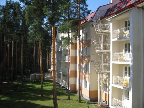 Гостиница Алеша Попович Двор 3 Ярославль  цены отеля