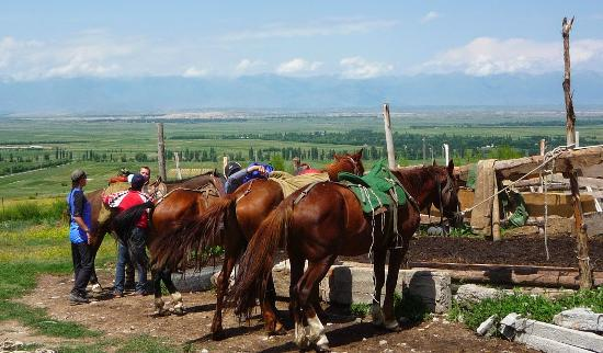Bulak Say Horseback and Trekking