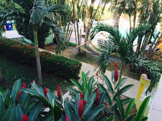 Hotel Portofino : Vista
