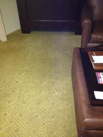 Homewood Suites by Hilton Atlanta - Buckhead: Dirty and worn out carpet