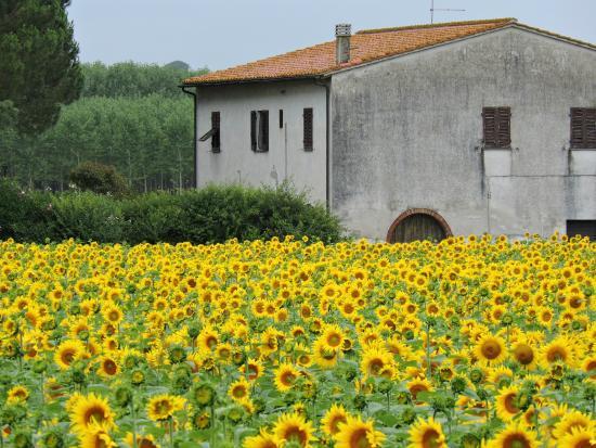 Toscana e Gusto