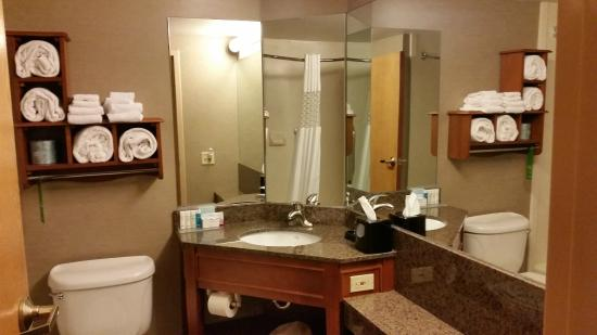 Hampton Inn Muskegon: Bathroom