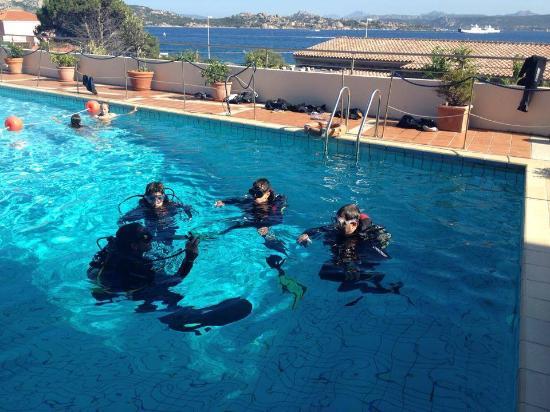 Area 11 Diver