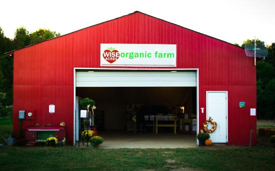 ‪Wise Acres Organic Strawberry Farm‬