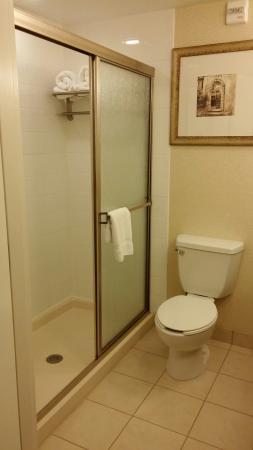 Hilton Garden Inn Huntsville South: Bathroom shower & toilet
