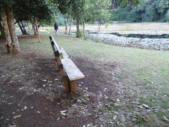 Foto de jard n bot nico de la universidad austral de chile for Jardin botanico tarifas