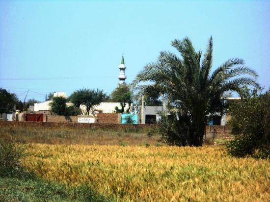Sanghar 사진