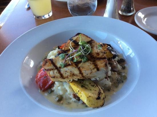 Trident Restaurant: Grilled shark