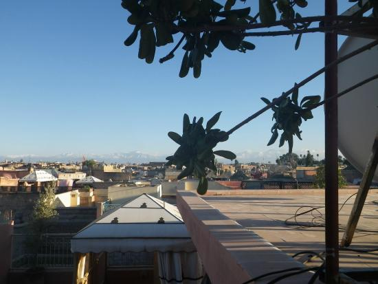 Riad Dixneuf La Ksour : View from roof terrace