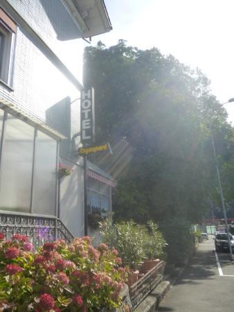 Hotel Rugenpark B&B: Entrada