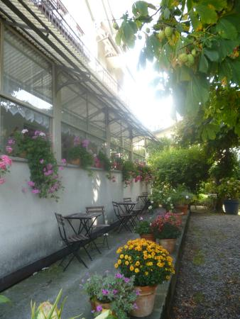Hotel Rugenpark B&B: Patio, lugar para desayunar