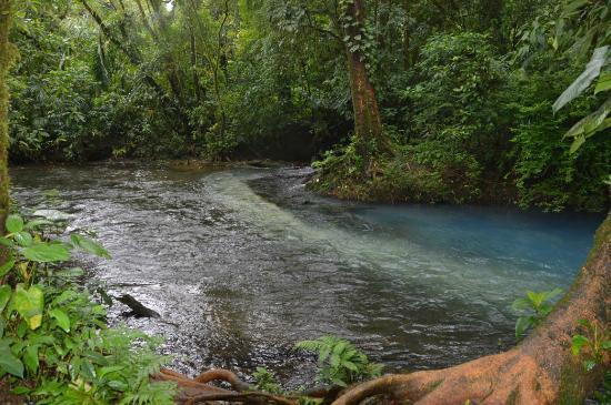 Tenorio National Park: samenkomst 2 stromen