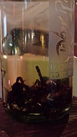 L'Argentina Grill: Scorpion tequila!