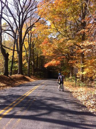 NJ Bike Tours​
