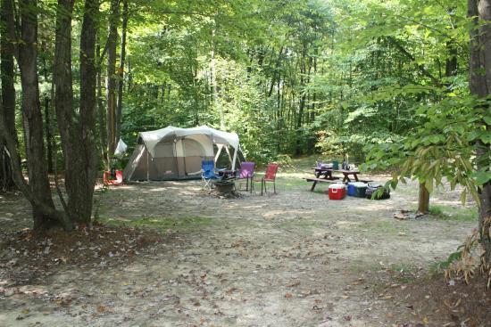 new forest camping with hook up How to hook up at an rv park thejeffroth loading  rv hook-up 101 essentials  how to camp in an rv at wal-mart for free - duration:.
