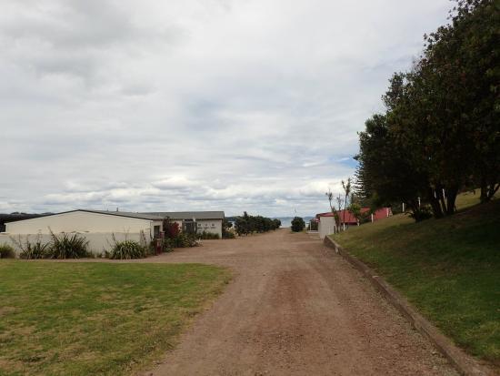 Rotoroa island. 1. by Jill.