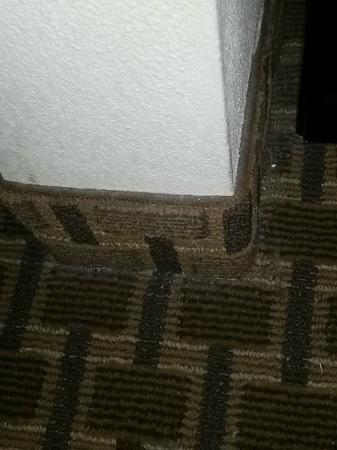 Four Points By Sheraton Memphis-Southwind : corners were full of dirt and dust