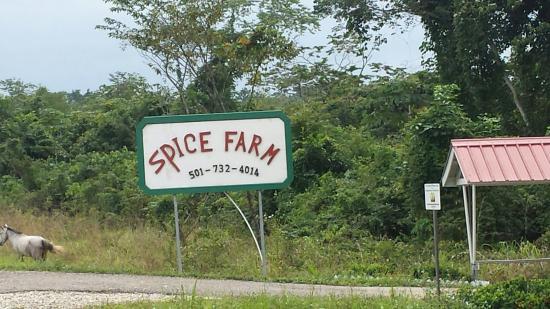 Belize Spice Farm & Botanical Garden: Entrance