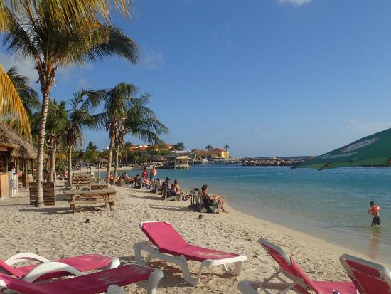 Beach area picture of lions dive beach resort curacao - Lions dive resort curacao ...