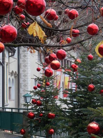 Stieglkeller: Christmas in the Beer Garden